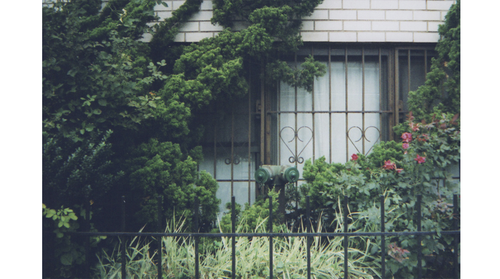 21 Exposures: Jake Lore